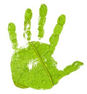 greenhand_muveszetkozpont