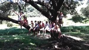 muveszeti tabor kapolcs_123